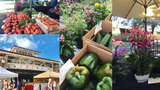 Shop locally at these Central Florida farmers markets