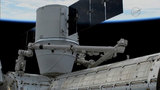 SpaceX Dragon spacecraft back at space station with pre-Christmas haul