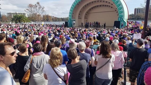 Women's March_1516556271935.jpg.jpg