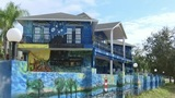 Mount Dora officials cite safety concerns over 'Starry Night' mural