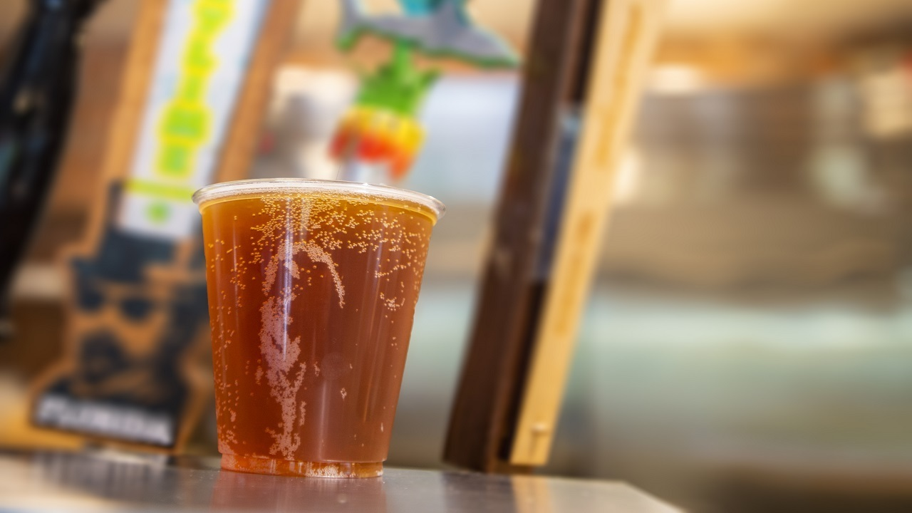 _DSC9251_1526508344394_12082696_ver1.0_1280_720 SeaWorld Orlando to offer visitors free beer all summer long