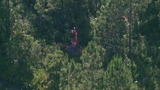 Small plane makes emergency landing near Spruce Creek Fly-In, Volusia&hellip&#x3b;