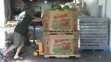 Nonprofit brings fresh food to hungry Orlando-area community