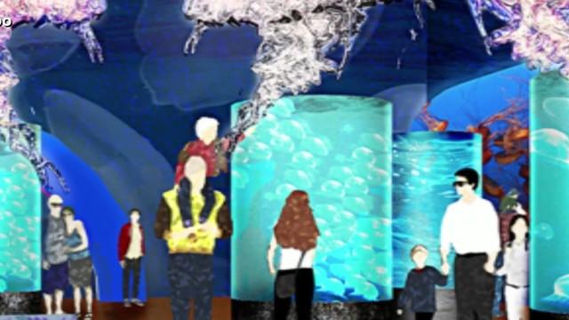 Satellite Beach City Council supports Brevard aquarium project