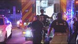 Girl wounded when bullet flies into Miami apartment