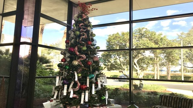 'It's the most giving time of year': News 6 launches annual Angel Tree program