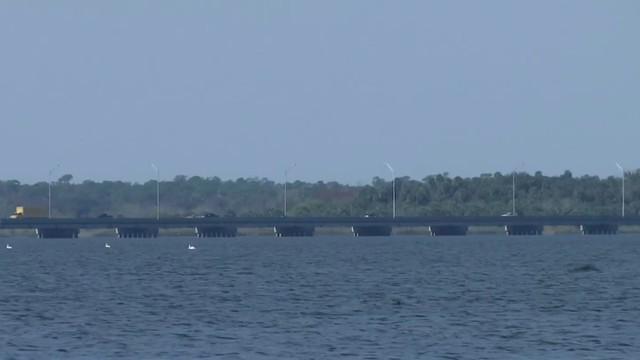Florida wildlife officials' undercover investigation nets arrests