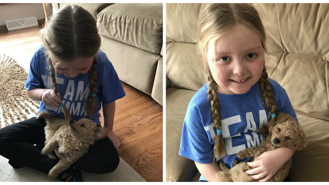 Girl fighting brain tumor has 1 simple request: A message from your dog