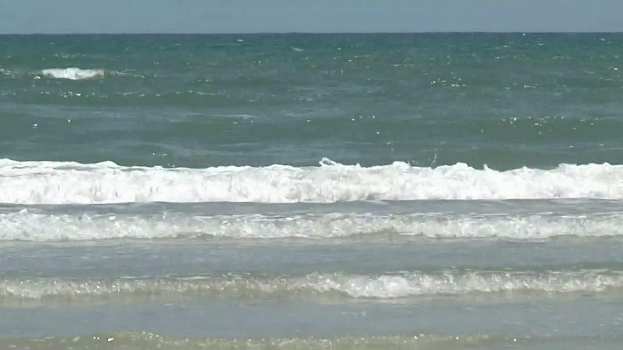 First shark bite victim of 2019: Florida man bitten off New