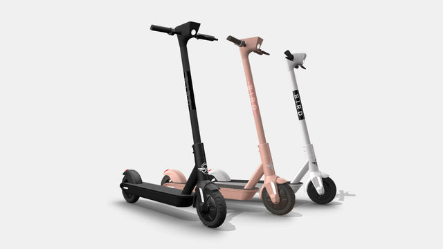 Bird scooters aren't just for rental anymore: Would you buy one?