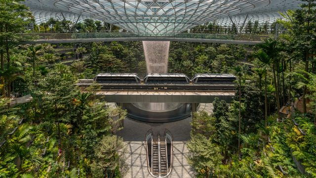 This stunning airport will knock your socks off -- and these 7 photos prove it