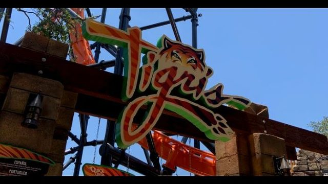 Busch Gardens' Tigris: Florida's tallest launch coaster earns its stripes