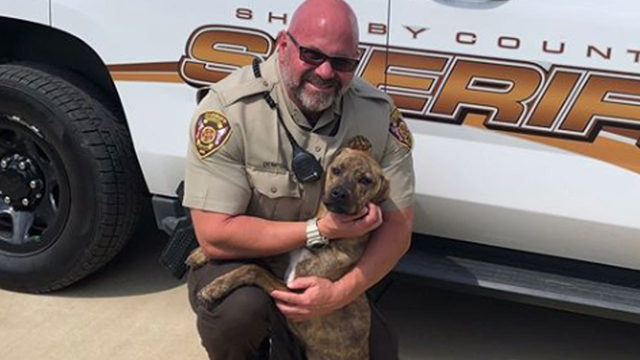 Deputy adopts dog after he responds to animal complaint call of malnourished pup