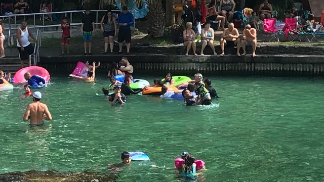 Scorching temps send hundreds of people to Wekiva Springs
