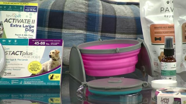 Preparing your pets for the summer months