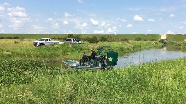 Alligator found by man's body in Florida canal