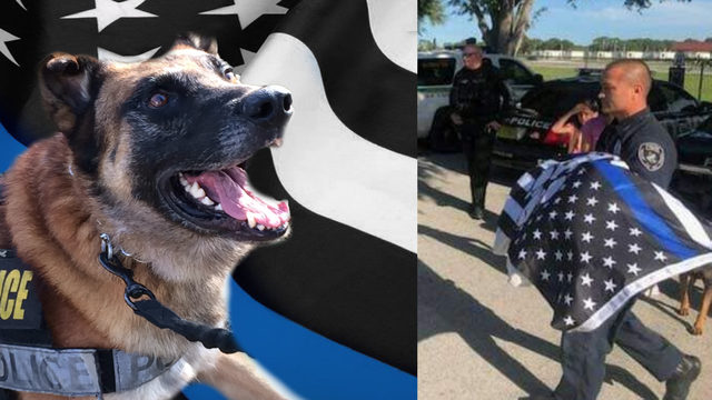 Retired Cocoa police K-9 dies from natural causes