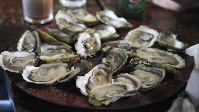 Who stole 17,000 oysters from a Florida seafood company?