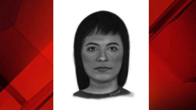 Deputies release sketch of woman who robbed 74-year-old woman at gunpoint