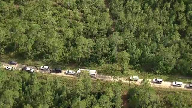 Man lies about being shot in Florida forest, deputies say
