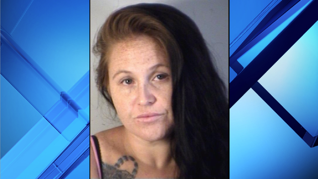 Florida woman throws dog over fence at animal shelter, deputies say