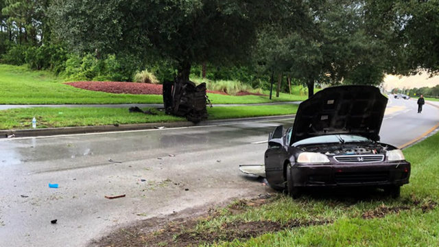 2 taken to hospital after car crashes into tree, splits in half