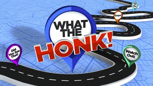 What the Honk: Trooper Steve explores quirks of Central Florida drivers