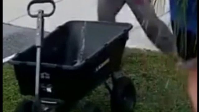ClickO on the Go: Sword fight over wheelbarrow; Disney honors free…