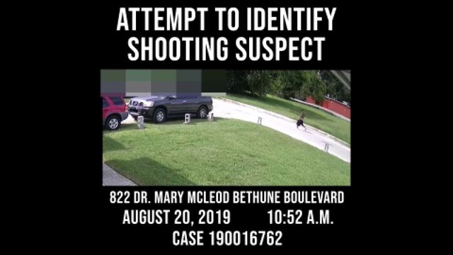 Video: Daytona Beach police seek shooting suspect