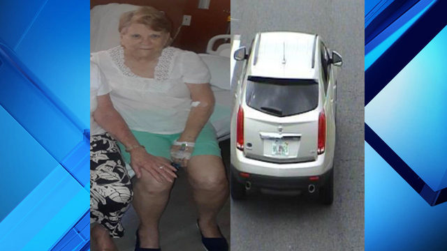 New Smyrna Beach police looking for missing 87-year-old woman
