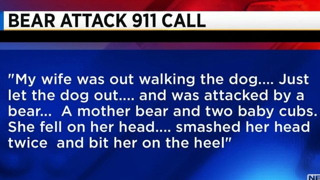 911 calls released after bear bites woman in Longwood