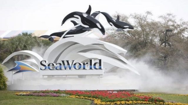 SeaWorld lays off 100 call center employees