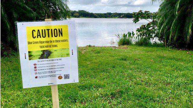 Blue-green algae found at Orange County lake; health alert issued