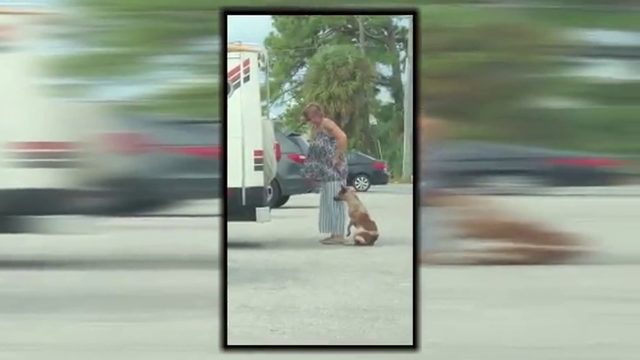 Video shows woman yanking dog on leash