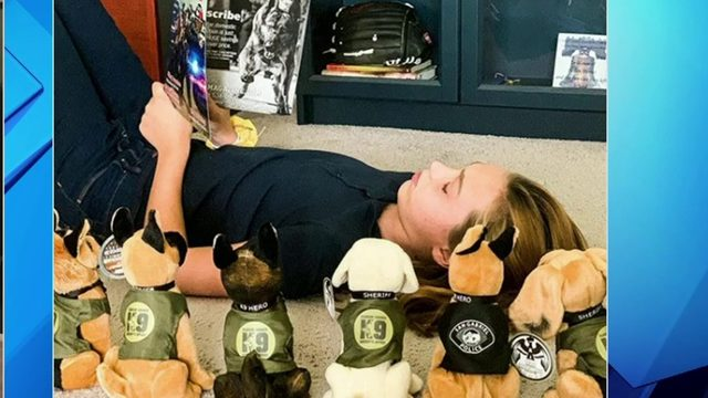 Officers buy popsicles for a family, K-9 plushes raise funds for unit