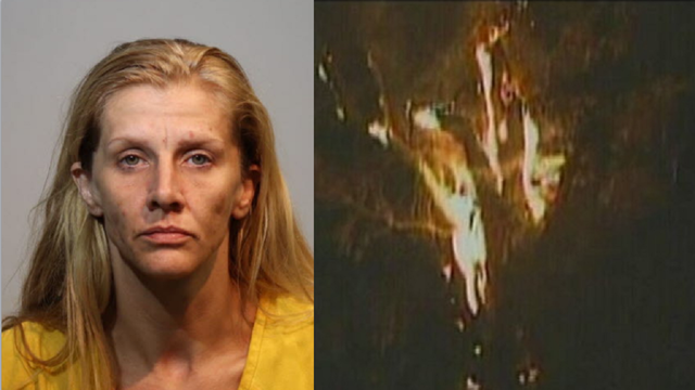 Woman who burned down historic tree while smoking meth arrested again