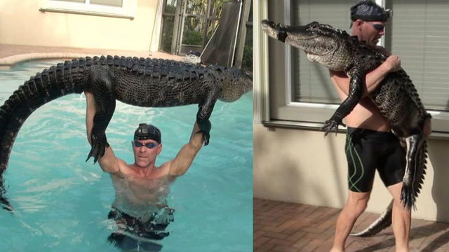 Florida trapper wrangles nearly 9-foot gator from pool with bare hands