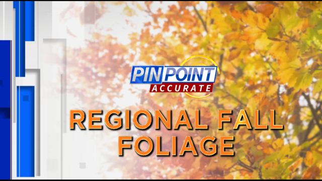 Itching to see fall color? Regional foliage update