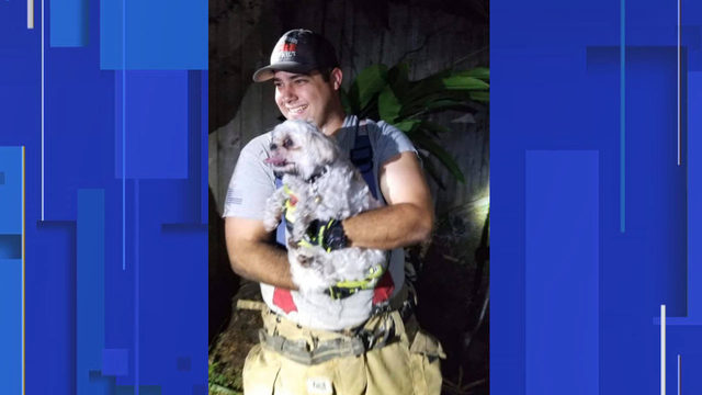 Orange County firefighters rescue dog from under shed